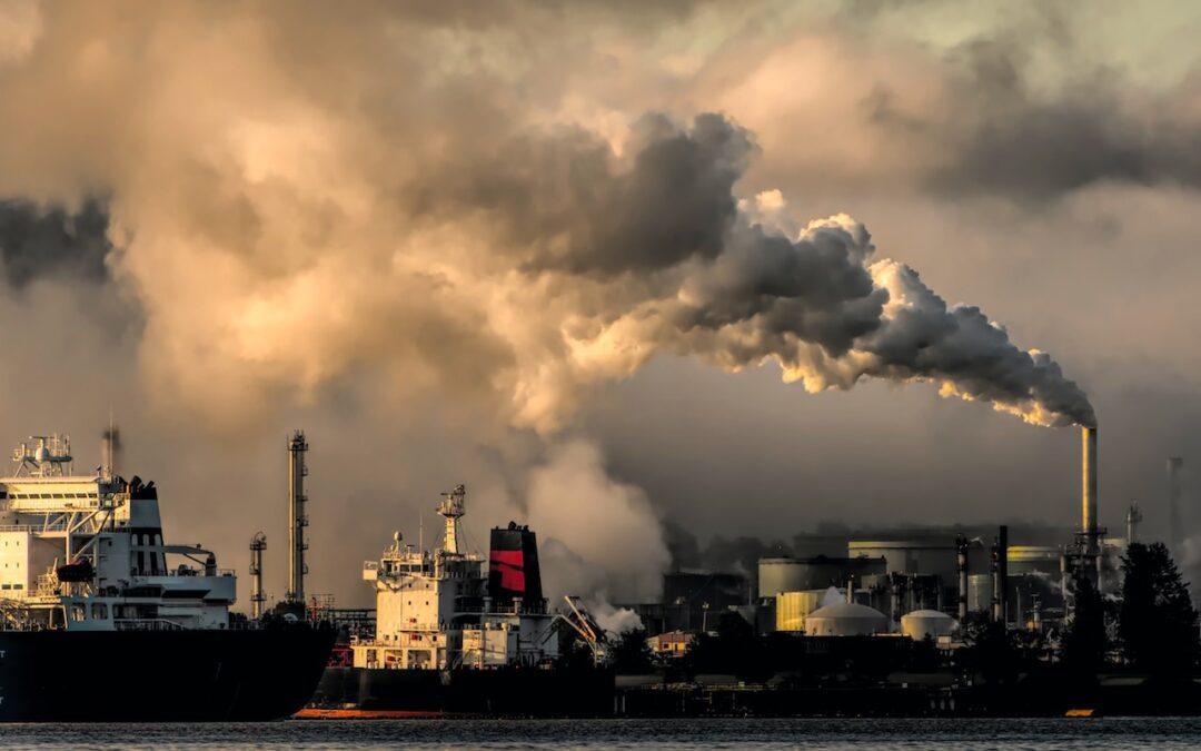 Ways to Reduce Carbon Footprint Around The World